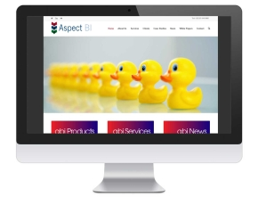 Aspect Business Intelligence