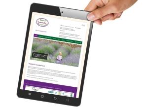 Wexford Lavender Farm